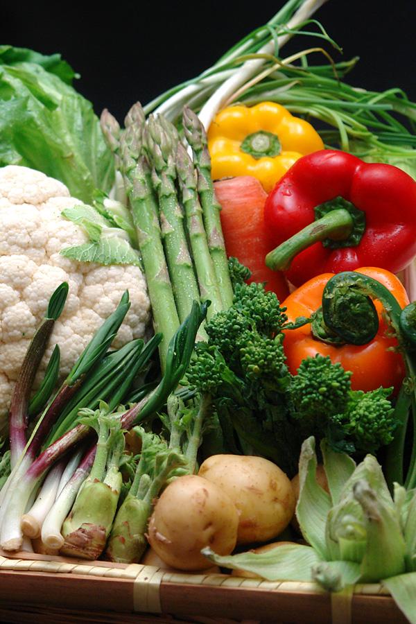 遠州地野菜